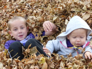 We had a LOT of leaves!