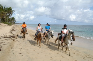 We went horseback riding on the beach one morning