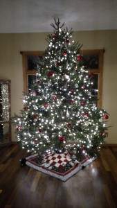 Our crazy tall (10 feet!), fat tree with 1800 LED lights! It was awesome!