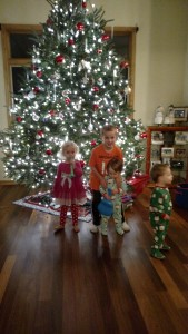 Adam, Allison, Emma, & Linus on Christmas. We waited too long to try for a pic. They weren't interested!
